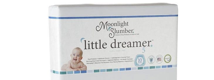 Moonlight Slumber Little Dreamer Dual Firmness All Foam Crib Mattress